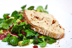 在与鸡豆hummus的片式上添面包在蔬菜沙拉河床上  免版税图库摄影