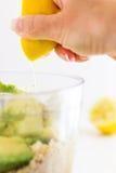 Hummus cremoso sano dell'avocado Immagini Stock Libere da Diritti