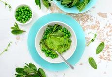Hummus das ervilhas verdes com as folhas de hortelã fresca imagem de stock