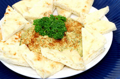 Hummus en het Vlakke Voorgerecht van het Brood met Paprika stock fotografie