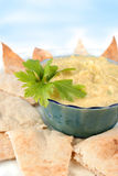 Hummus en pitabroodje Royalty-vrije Stock Fotografie