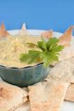 Hummus en pitabroodje Royalty-vrije Stock Afbeeldingen