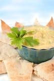 Hummus et pita Photographie stock libre de droits