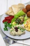 Hummus, falafel, baba ghanoush, tabbouleh Stock Images