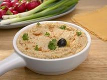 Hummus mit Scallions und Rettichen lizenzfreies stockbild