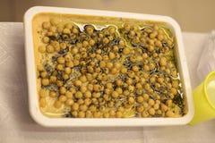 Hummus på en lantlig trätabell Arkivfoto