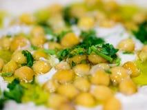 Hummus platta 2 Royaltyfri Foto