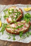 Hummus sourdoughrostat br?d med den r?daktiga och l?sa raket Sund strikt vegetarianmat fotografering för bildbyråer