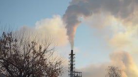 Humo blanco de las chimeneas de la fábrica que suben en el cielo azul, los pájaros que vuelan en cielo contra un fondo del cielo  almacen de metraje de vídeo
