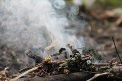 Humo del fuego en bosque foto de archivo