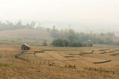 Humo del incendio forestal Imagen de archivo libre de regalías