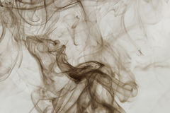 Humo en el fondo blanco Imagen de archivo libre de regalías