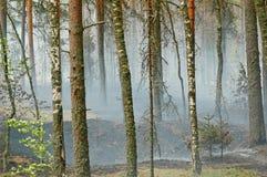 Humo y fuego en la madera Imágenes de archivo libres de regalías