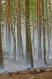 Humo y fuego en la madera Fotografía de archivo libre de regalías