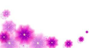 Humor da flor Fotos de Stock