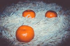 Humor de la mandarina de la fruta y del caseoso deliciosos, maduros por el Año Nuevo y la Navidad Foto de archivo libre de regalías