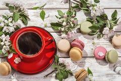 Humor de la primavera, aún-vida con los macarrones franceses del café y ramas del Apple-árbol floreciente Imagen de archivo libre de regalías