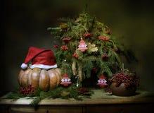 Humor del Año Nuevo Fotos de archivo libres de regalías