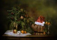 Humor del Año Nuevo Foto de archivo libre de regalías