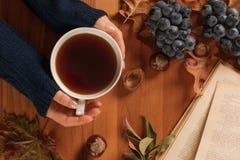 Humor del otoño, mujer que sostiene la taza de té caliente en manos fotos de archivo