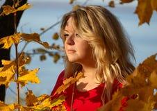 Humor del otoño - una mujer 35-45 años en el bosque del otoño mira hacia el sol poniente Imágenes de archivo libres de regalías