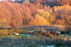 Humor do outono e do inverno no lago imagens de stock