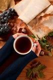 Humor do outono, mulher que guarda o copo do chá quente nas mãos fotos de stock