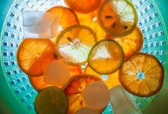 Humor do verão com citrinas foto de stock royalty free