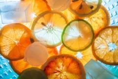 Humor do verão com citrinas imagem de stock royalty free