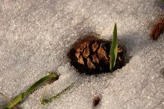 Humor maravilloso del invierno foto de archivo libre de regalías