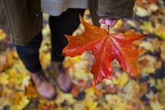 Humor y muchacha del otoño Imágenes de archivo libres de regalías