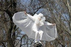 Humorina em Odessa, abril 1, 2011, Ucrânia Fotos de Stock Royalty Free
