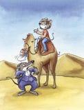Humoristische muizen in woestijn Stock Foto's