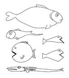 Humorous drawing fish. Humorous drawing fishes set. Illustration Stock Illustration