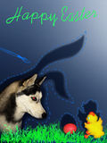 Humorous greeting card for Easter. With a dog and chicken Stock Photography