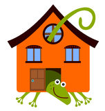 House lizard Stock Images