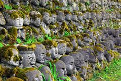 Humorous rakan. Stone rakan , Buddha statues with funny humorous faces partially covered by greenery Royalty Free Stock Photography