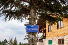 Humorvoller ländlich idyllisch Berg Chuck Norris Street Road Sign lizenzfreies stockbild