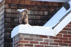 Humour in gargoyle in the winter. Rooftop gargoyle figure royalty free stock photo