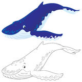 Hump-backed whale stock illustration