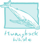 Humpback Whale in Blue Royalty Free Stock Image