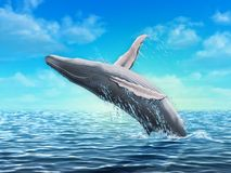 Humpback whale jumping. Out of water. Digital illustration Stock Photos
