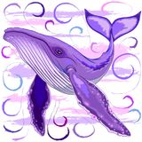 Humpback Whale on Purple and Pink Stock Photos