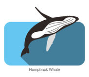 Humpback Whales jumping in the sea, animal flat icon. Vector illustration Royalty Free Stock Images