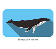Humpback Whales swimming in the sea, animal flat icon. Vector illustration Stock Photos