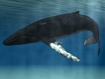 humpback wieloryb royalty ilustracja