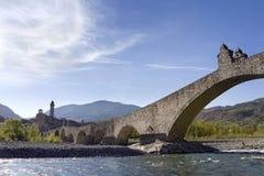 humpbacked bro Fotografering för Bildbyråer