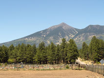 Humphreys Peak. Arizona's highest point, near Flagstaff stock photo