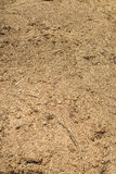 Humus texture. Horse dung on the street Royalty Free Stock Image
