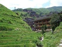 Hunan a terrazze Cina di Longsheng di longji di Wengjia dei giacimenti del riso Immagini Stock